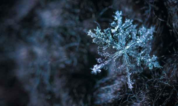 Pexels Frozen 2